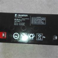 12V120AH冠军蓄电池NP120-12全新