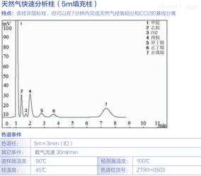 天然气快速分析柱(5m填充柱)