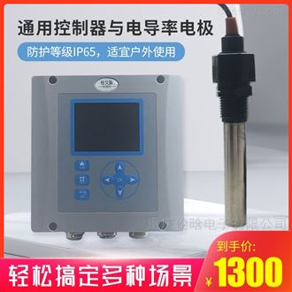 控制器与电导率电极组合
