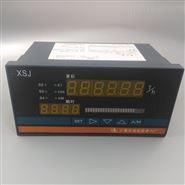 XSJ流量数字积算仪
