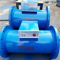 多功能微电子水处理器RXDZ-65
