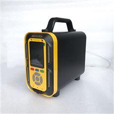 便携手提式氧气分析仪