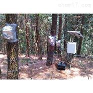 德国Ecomatik SF-L四针茎流测量系统
