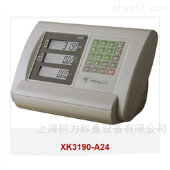 XK3190-A24计数仪表