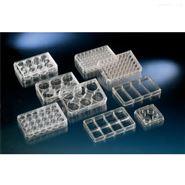 Nunc48孔細胞培養板獨立包裝標準TC平底帶蓋