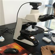 第四季度尼康E200显微镜特价