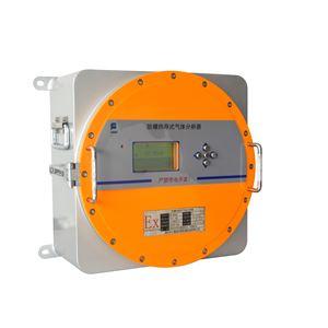防爆在线氢气分析仪