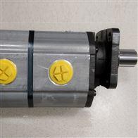 EIPC3-025-RK23-1X原装德国ECKERLE齿轮泵 EIPC5-100RA23-10