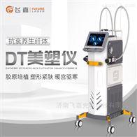 韩国进口抗衰美容仪DT美塑仪