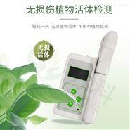 叶绿素含量测定仪器