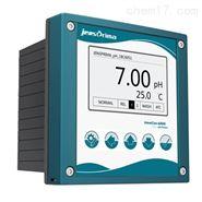 脱硫废水pH电极/分析仪