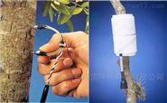 CR植物茎流监测系统