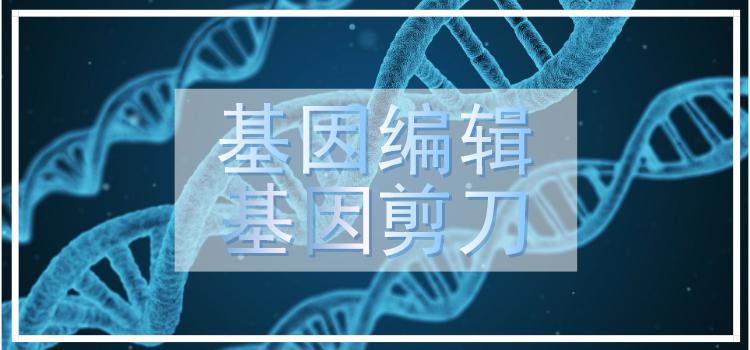 2020诺贝尔奖陆续揭晓 基因剪刀再上热搜