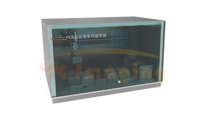 PCR反应体系构建