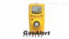 GAXT-H气体检测仪