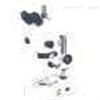 XTL-3400三目體視顯微鏡XTL-3400